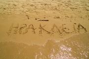 Οι Παραλίες στην Ηρακλειά