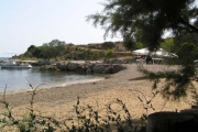 Spiaggia, Βάτσα