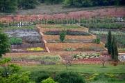 Βαλκανικός Βοτανικός Κήπος Κρουσίων, Κιλκίς