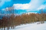 Χιονοδρομικό Κέντρο Βιτσίου, Καστοριά