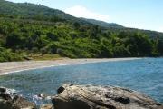 Παραλίες της Λάρισας