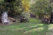 Δάσος Πολυδενρίου, Λάρισα