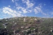 Λύκαιον Όρος, Αρκαδία